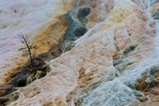 yellowstone_small_5.jpg