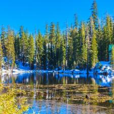 Lake, house, trees: Sierra Nevada