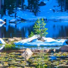 Mountain Lake in Sierra Nevada
