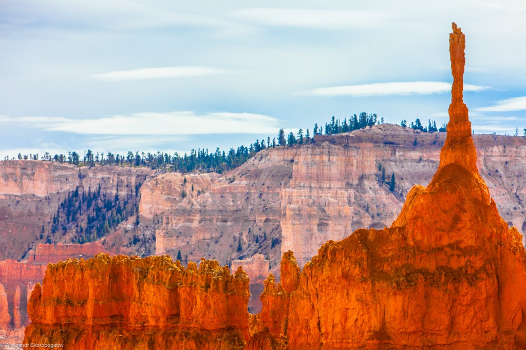 Bryce Canyon Shapes