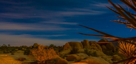 Camping in the Joshua Tree desert